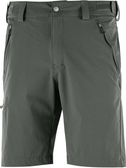 Salomon M's Wayfarer Shorts Regular urban chic